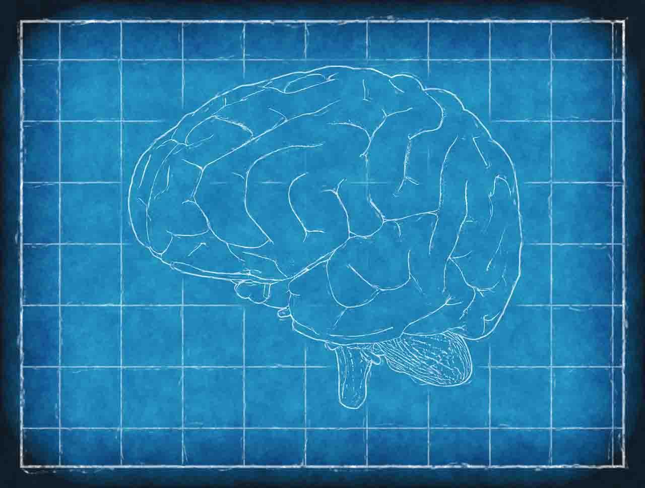 「意識」是什麼?