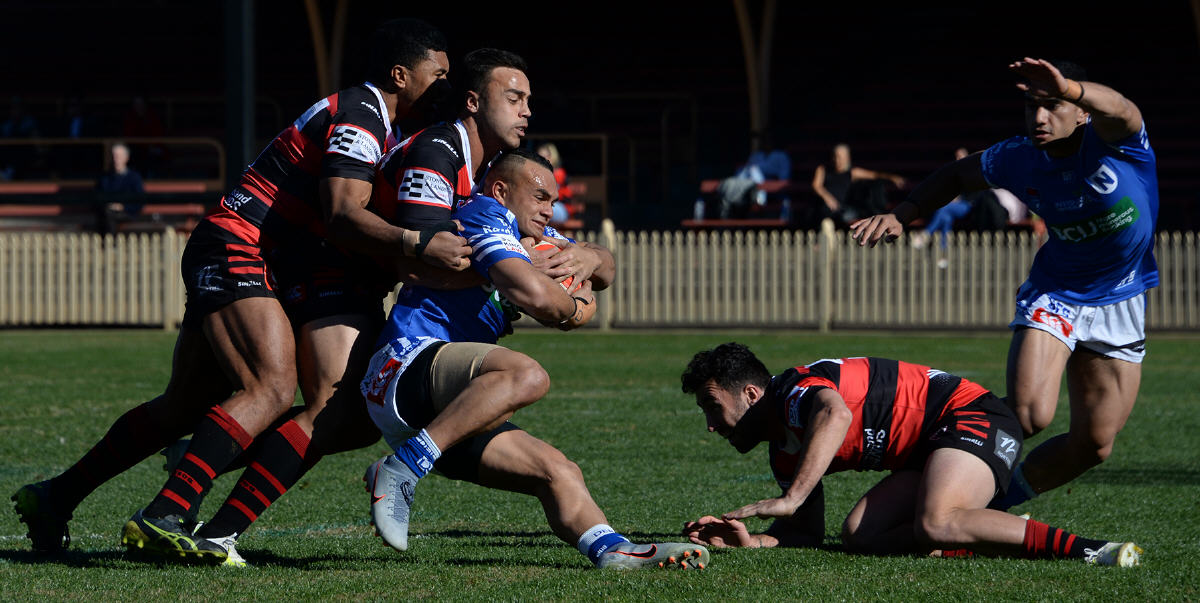 Newtown Jets centre Latrell Schaumkel is wrapped up by these North Sydney Bears defenders in Sunday's Canterbury Cup fixture played at North Sydney Oval. Photo: Michael Magee Photography.