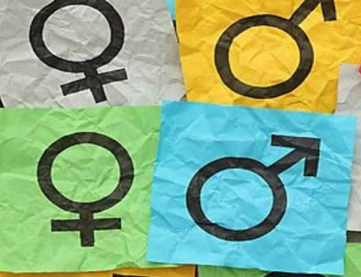 What's So Shocking About Gender Neutral Language?
