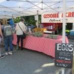 Market Day: Thursday, June 8, 2017