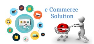 Customization; the Ultimate solution for the development of E-commerce