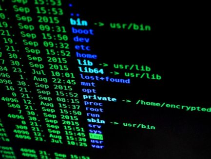 Hackers in e-commerce