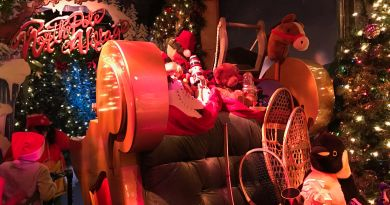 Best Tips to Visit Macy's Santaland: Where Kids Meet Santa in NYC