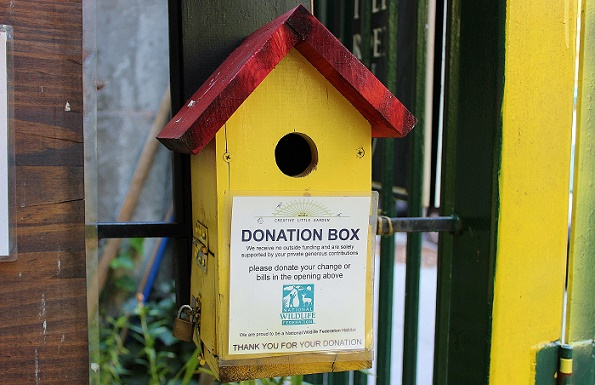 Donation_box_Creative_blog
