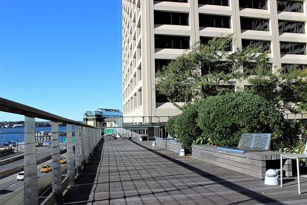 Elevated_Acre_view_blog(1)