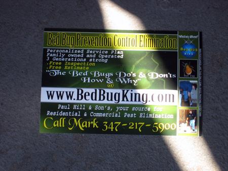 Bedbug King