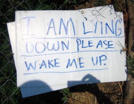 Please wake me up