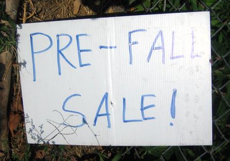 Pre-Fall Sale