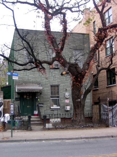 Kingsland Avenue Pigeon House