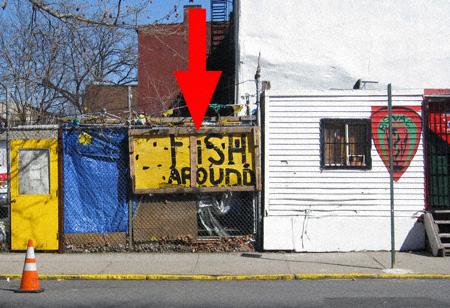Fish Around