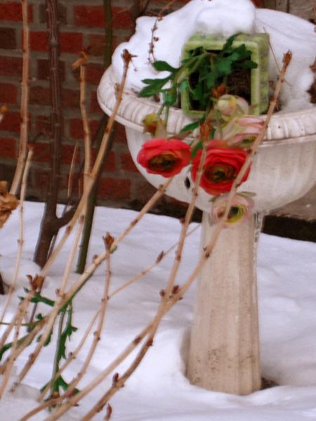 sunnysideflowers