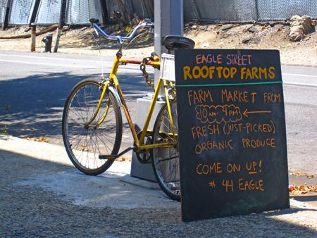 Rooftop FarmsNYS
