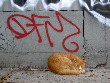 naptime