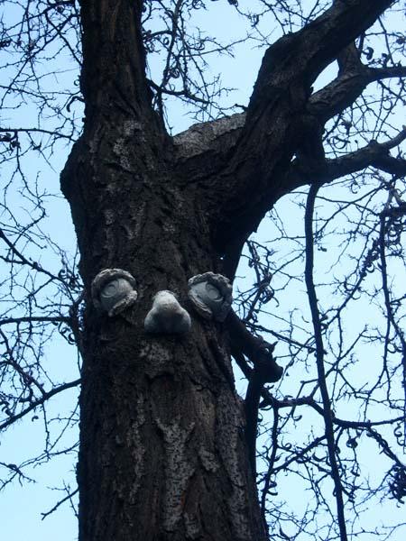 tree2rev