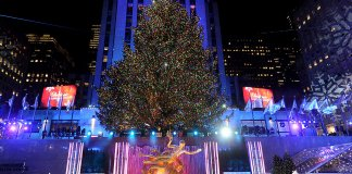 tree - events - nyc