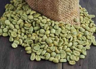 Green-Coffee-Bean - Newzito