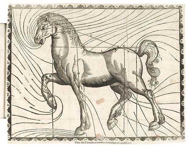 02-caballo