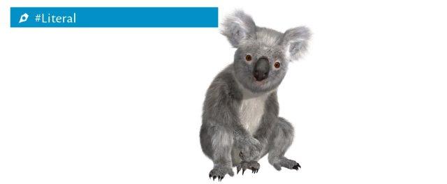 literal-koala
