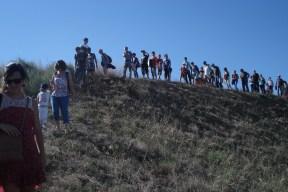 Balade au fil du ruisseau des Aygalades