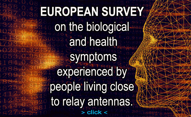 European Survey_Uk Version