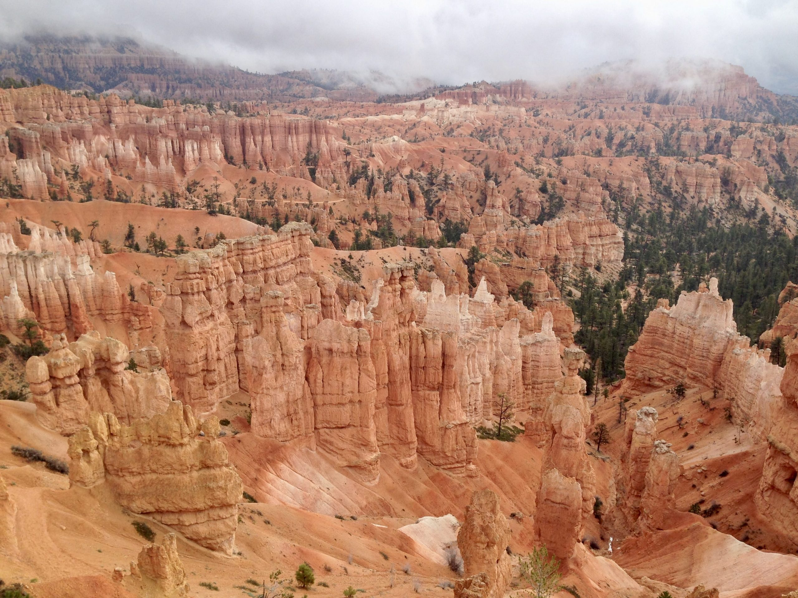 View from Figure 8 Trail in Bryce Canyon National Park