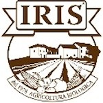 Foto del profilo di IRIS