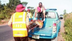 158 persons perish in road accidents