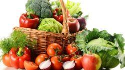 Diets for vegetarians