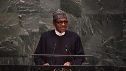 Buhari attends proclamation of Republic of Niger ceremony Monday
