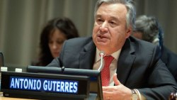 UN staff go on strike over pay cut