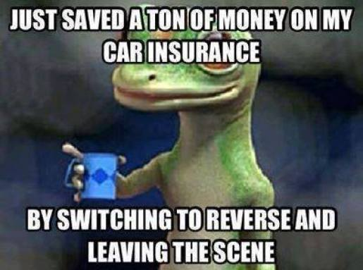 Funny-car-insurance-meme