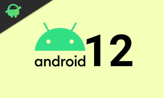 What is Google's next big update (Android 12)