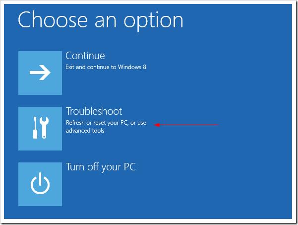 Advanced Startup Option