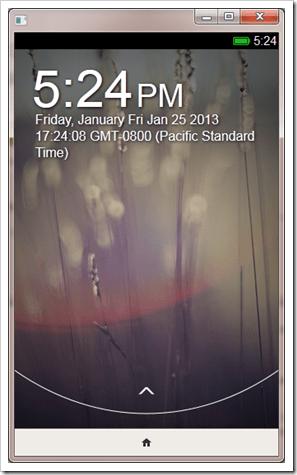 2013-01-25_1724_002