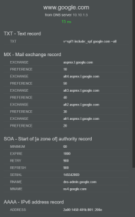 Basic IP Tools - DNS Info