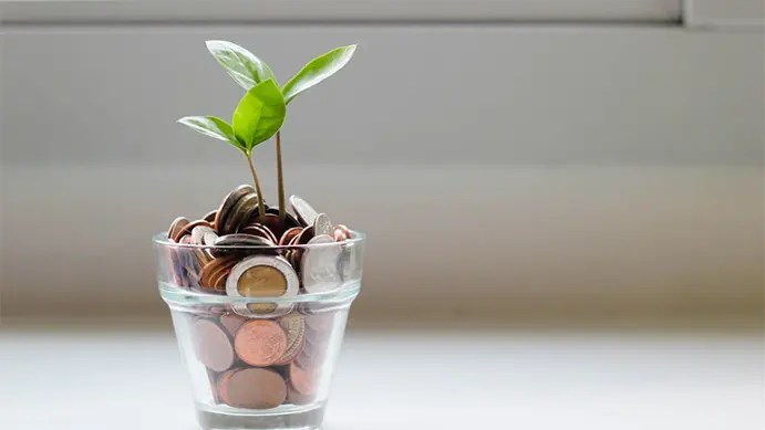 Grow Your Business with a Reseller Program
