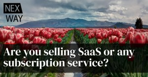 Are you selling SaaS or any subscription service?