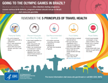 CDC Brazil Zika Travel infographic