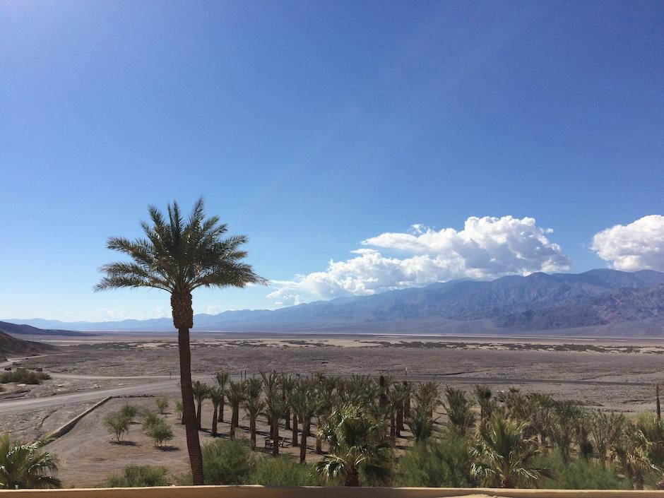 Palme auf der linken Seite, rechts davon noch viele Palmen, im Hintergrund Death Valley in der USA. Blauer Himmel und am Horizont ein Wolkenband