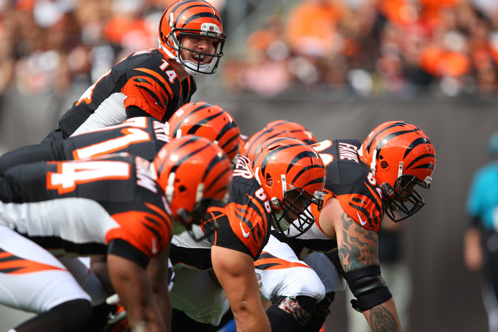 What questions must the Bengals answer this season?