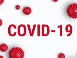 Jumlah Kasus Per Hari Ini Virus Corona Indonesia dan Dunia