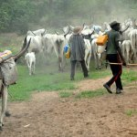 Fulani herdsmen news today