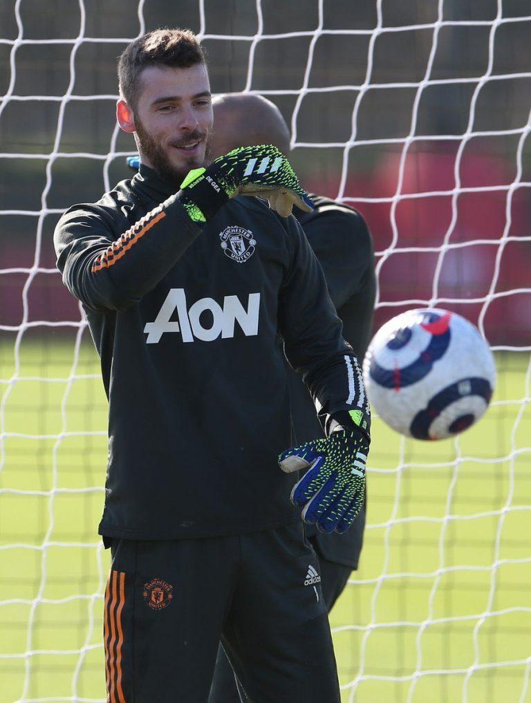 goalkeeper David de Gea