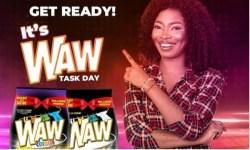 BBNaija WAW Task Winners 2021
