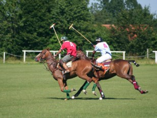 Image result for 2017 International Lagos Polo tourney begins