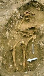 An Iron Age burial from the cemetery discovered in 1982