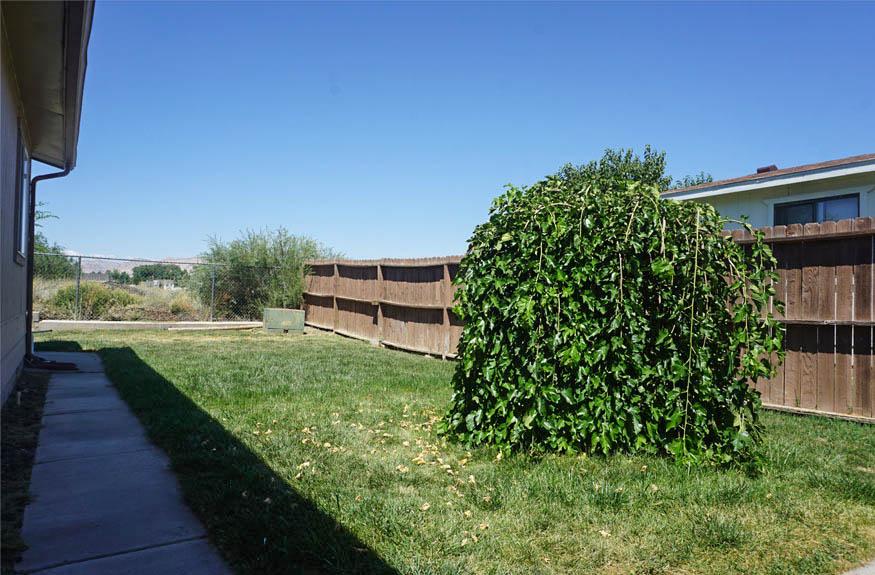 Backyard with sprinkler system