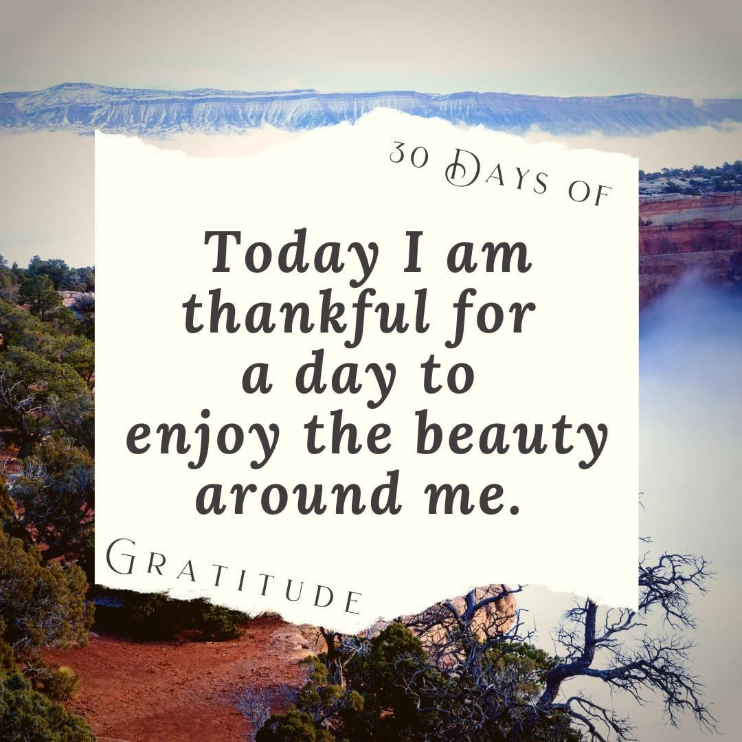 While many are jostling for a great deal in the stores today, others are taking the time to #getoutside and enjoy nature.   Whatever you are choosing to do today, I hope that your day is fantastic!   #30daysofgratitude #thankful #blessed #grateful #gratitudechallenge #gratitude #thanksgiving