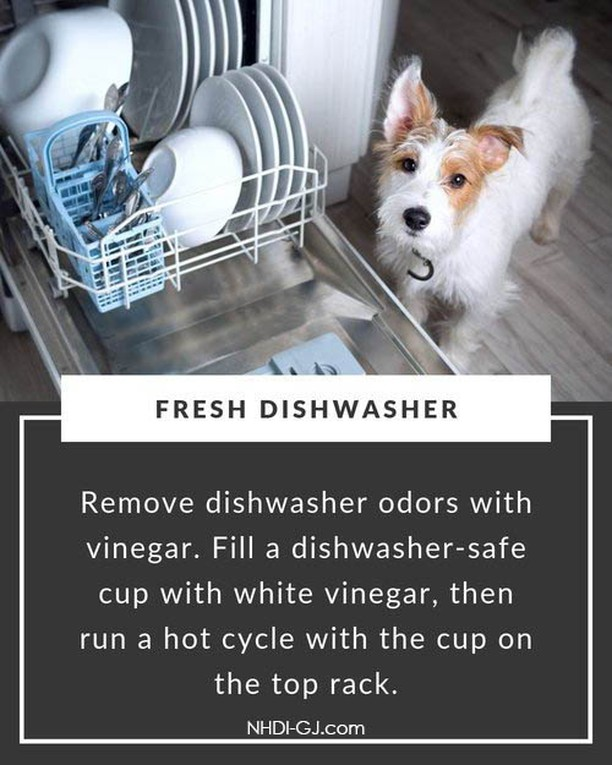 Phew! Christmas is over!  Is it time to freshen up your dishwasher after the workout it's gotten through this Holiday Season?   Fill a 1 cup measuring cup with white vinegar, place it upright & full in the top rack of your dishwasher, & run a hot cycle.   Now your dishwasher is ready for 2020!