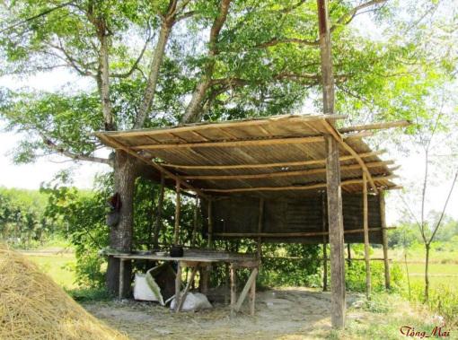 a-maiasia2011-quan-ben-duong-p1